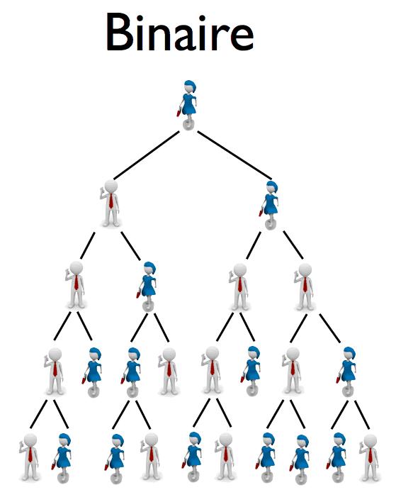plan binaire en MLM