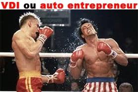 Statut VDI ou auto entrepreneur