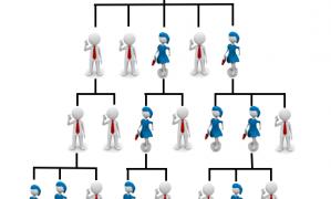 Plan Binaire, Plan Uni-niveau ou Plan Matrice Forcée ? 3 plans de rémunération les plus populaires en MLM